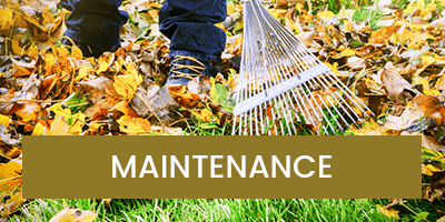 House & Garden Maintenance